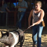 2013 Red River County Fair Pictures