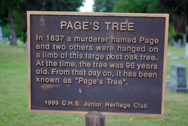 Page's Tree Marker